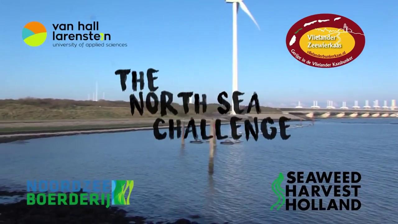 North Sea Challenge visits Seaweed Harvest Holland
